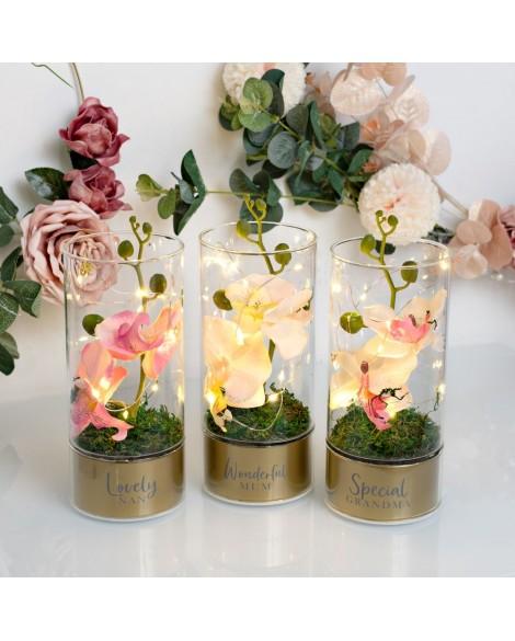 Peaches & Cream Tube Orchid Flowers LED Light - Nan